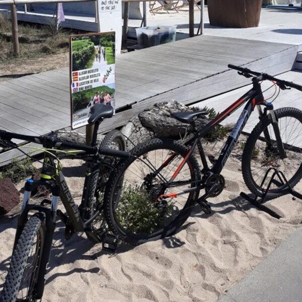 Bicicletas para aluguer no espaço Aloha em Vila do Conde