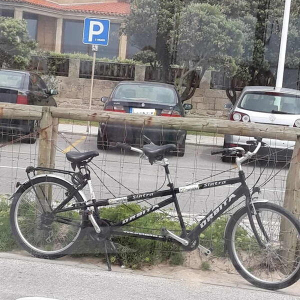 A two-seater tandem bike tour of the city